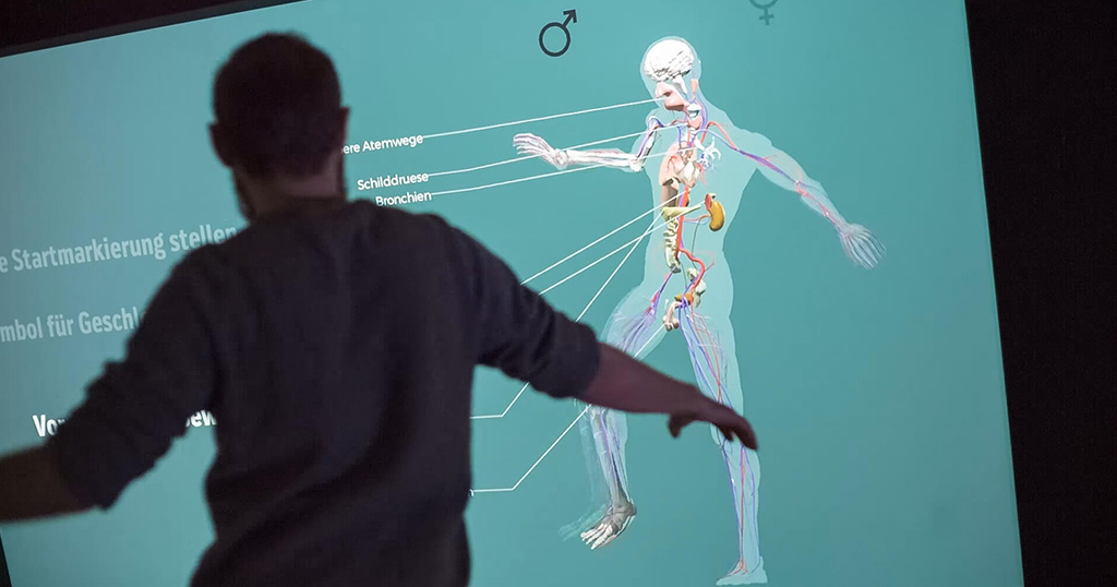 Anatomiespiegel - Eine multimediale, anatomische Installation